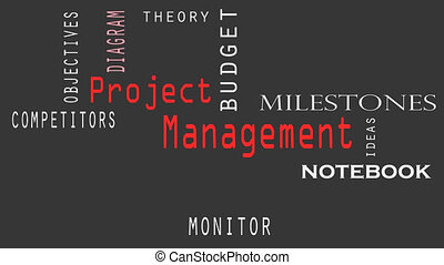 Project Management word cloud concept on black background.