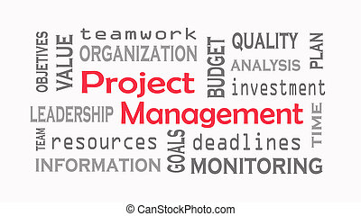 Project Management word cloud concept on white background.