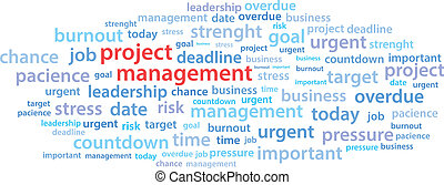 Project Management Word Cloud Vector Illustration