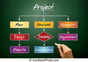 Project process