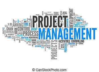 projectmanagement, woord, wolk