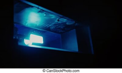 Projector in the cinema shows a movie