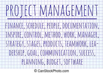 projekter ledelse, glose, sky