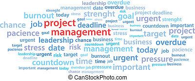 projektmanagement, wort, wolke
