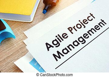 projeto, ágil, gerência, tabela., documento