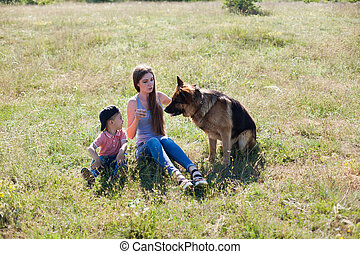 promenade, chien, femme, berger allemand