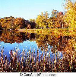 promenade, couleurs, -, lac, minnesota