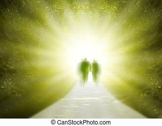 promenade, dans, lumière