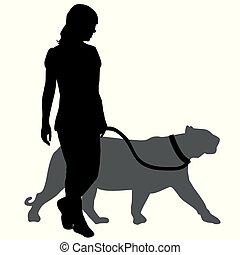 promenade, femme, silhouette, panthère