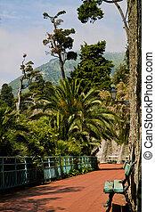 promenade, fleck, romantische