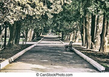 Promenade in a beautiful city park. Baku Botanical Park at the spring time. Baku