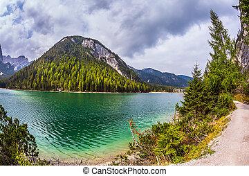 promenade, lac, autour de, alpin