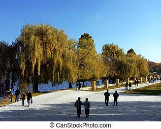 promenade, park