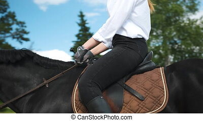 promenades, chemise, girl, pantalon, cheval, blanc, noir