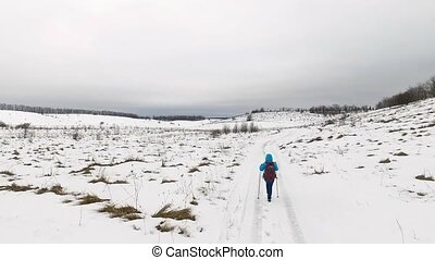 promenades, neige, touriste