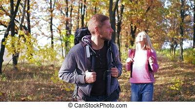 promenades, virages, côtés, dos, back., light-willed, couple, ensoleillé, sac à dos, regarder, jeune, a, type, après-midi, automne, sien, walk., tourists., girl, par, forest.