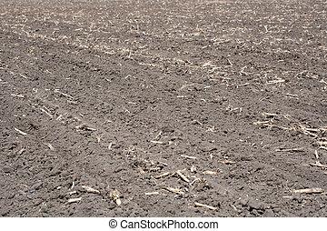 pronto, campo, semear, arado