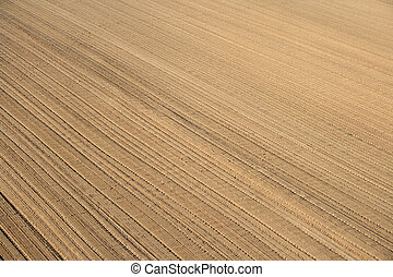 pronto, cultivo, ploughed, terra