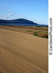 pronto, cultivo, terra, espaçoso, ploughed