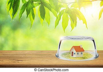 Property insurance.