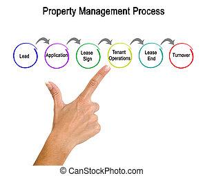 Property Management Process