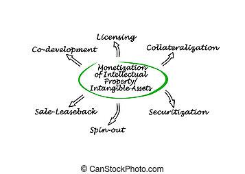 property/intangible, monetization, intellectuel, biens