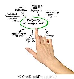 propiedad, dirección