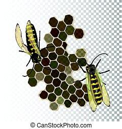 propolis., méhek, elszigetelt