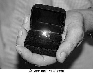 Propose - Marriage proposal