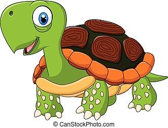 proposta, bambino, tartaruga, carino, isolato