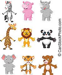 proposta, cartone animato, animale