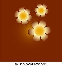 proposta, trefoil, flores, coloridos, violeta