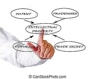 propriété, présentation, intellectuel, protection