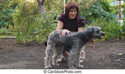 propriétaire, chien, heureux