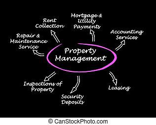 propriedade, gerência, aplicações