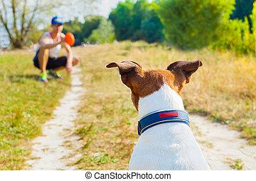 proprietário, cão, tocando