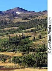 prospekt góry