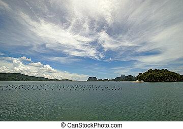 prospekt oceanu, krajobraz, spokojny
