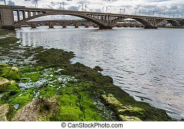 prospekt, od, przedimek określony przed rzeczownikami, mosty, w, niejaki, pipidówa, w, szkocja