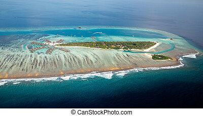 prospekt, typowy, wyspa, pełny, maldivian