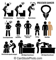 Prostate Cancer - Set of illustrations for prostate cancer...