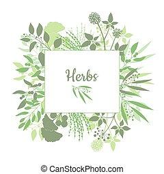 prostořeký bylina, sklad, emblem., nezkušený, čtverec, konstrukce, s, vybírání, o, plants., silueta, o, větvit, osamocený, oproti neposkvrněný, grafické pozadí