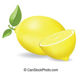 prostořeký citrón