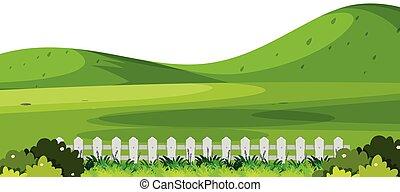 prosty, zielony, scena, natura