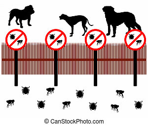 protéger, barrière, tictaque, puces, contre, derrière, chiens