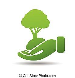 protección ambiental