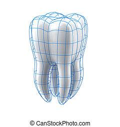 protección, diente