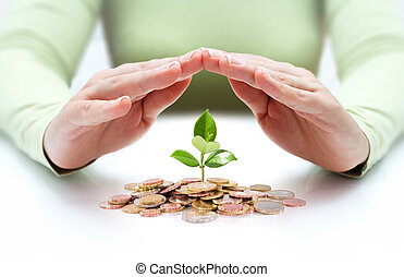 protect new business start-up - with hands and plant