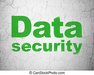 Protection concept: Data Security on wall background