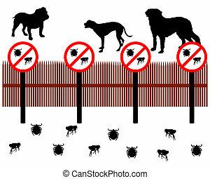 proteger, cerca, hace tictac, pulgas, contra, atrás, perros